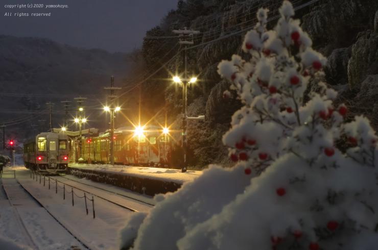 雪の朝、夜明け前_d0309612_09351174.jpg