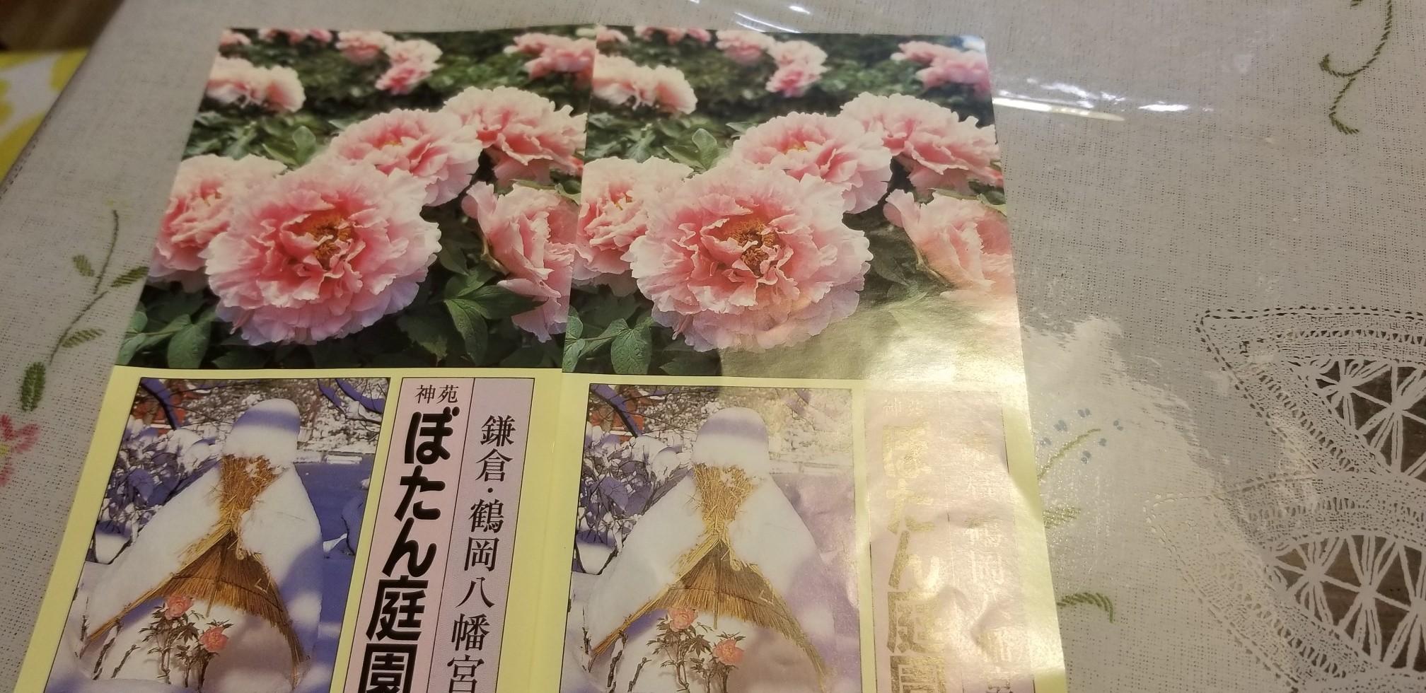 ♪2020年★鎌倉散策_d0162225_23353293.jpg