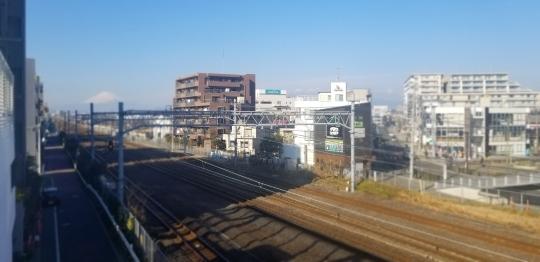 ♪2020年★鎌倉散策_d0162225_23353981.jpg