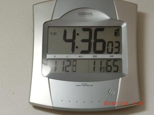 早起きしました 4時代です(*⌒∇⌒*)_c0347126_61370.jpg