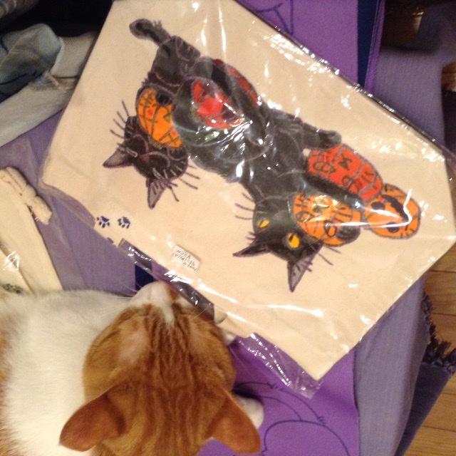 2月猫描き会のお知らせ_a0098635_18290721.jpeg