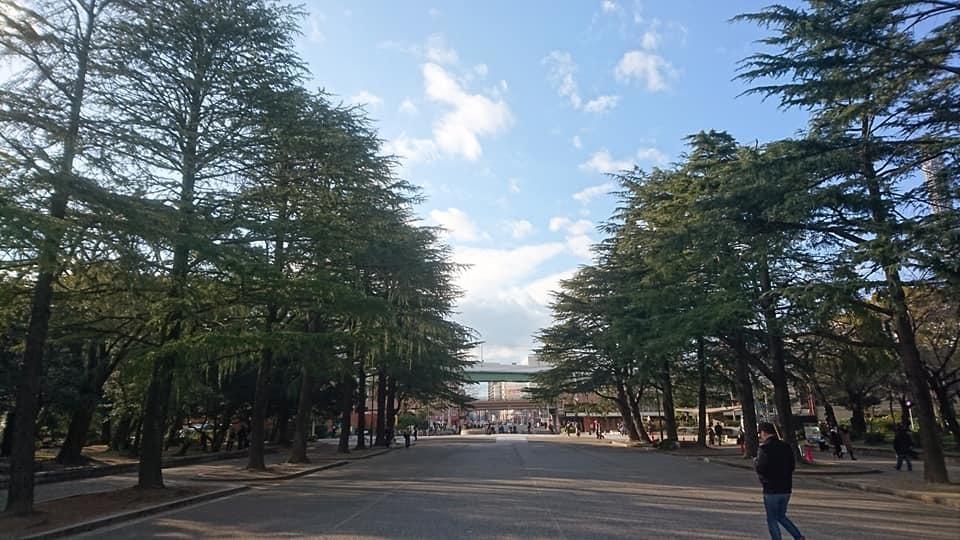 鶴舞公園へ行ってきました♪_f0373339_13421582.jpg