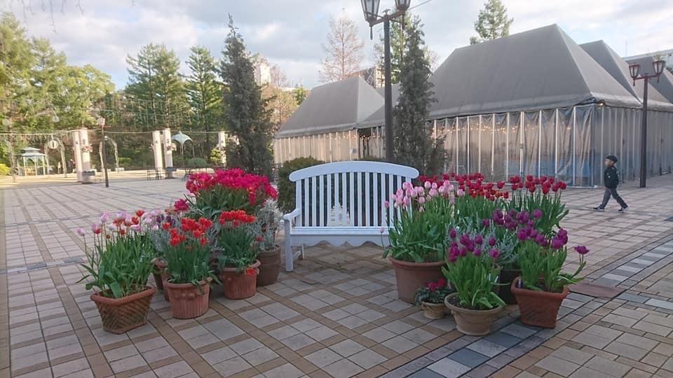 久屋大通庭園フラリエへ行ってきました_f0373339_14342753.jpg