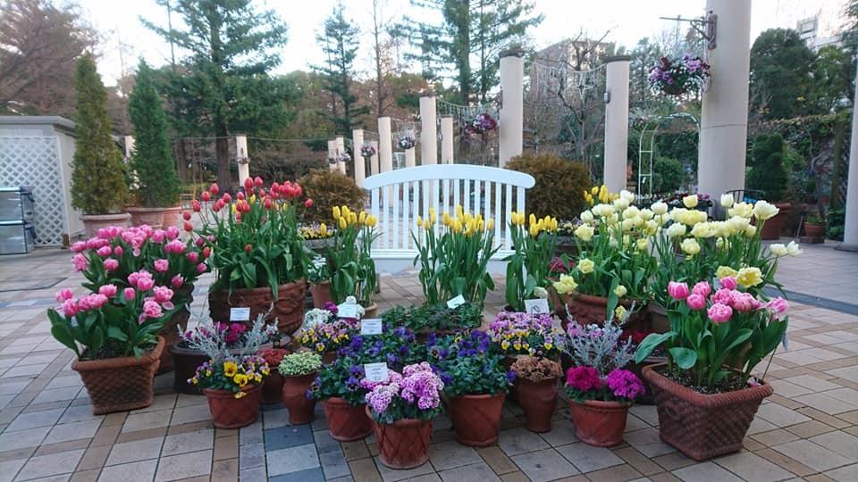 久屋大通庭園フラリエへ行ってきました_f0373339_14342877.jpg