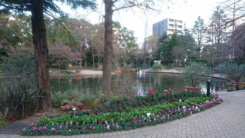 久屋大通庭園フラリエへ行ってきました_f0373339_14370026.jpg