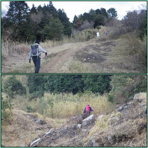 今年初の山歩き…平尾台_e0164643_16111875.jpg