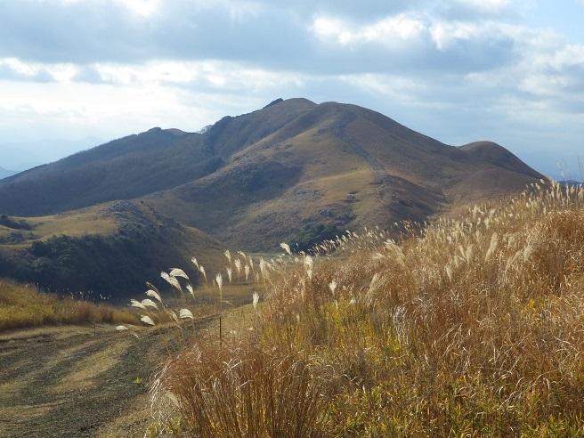 今年初の山歩き…平尾台_e0164643_16112941.jpg