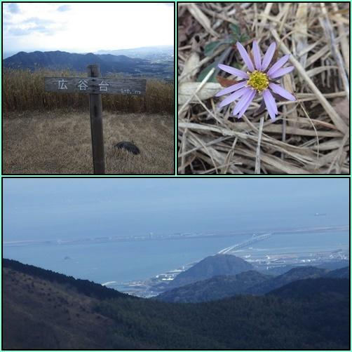 今年初の山歩き…平尾台_e0164643_16113200.jpg