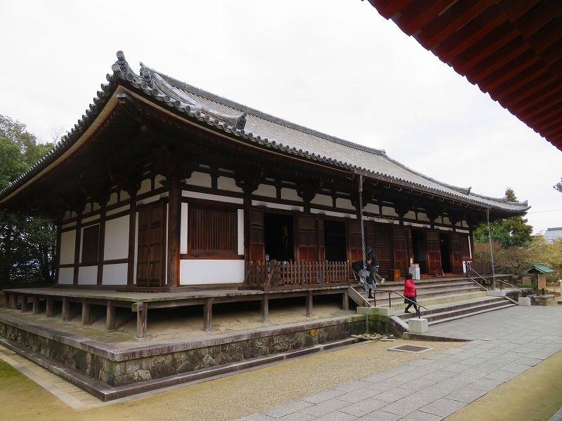 奈良「薬師寺の伽藍」20200112_e0237645_09434688.jpg