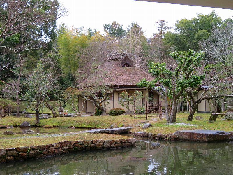 奈良国立博物館と奈良公園20200112_e0237645_15514509.jpg