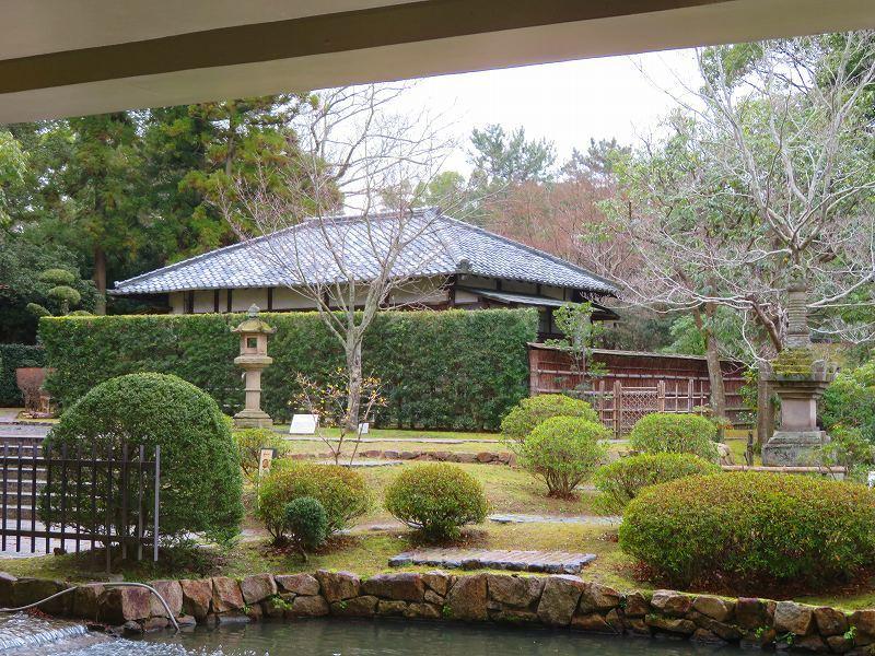 奈良国立博物館と奈良公園20200112_e0237645_15514534.jpg