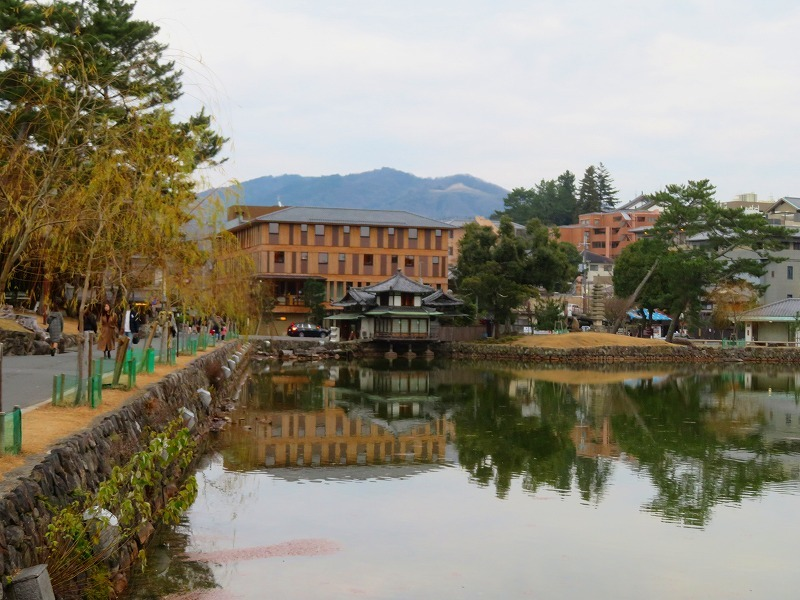 奈良市街を散策20200112_e0237645_15572317.jpg