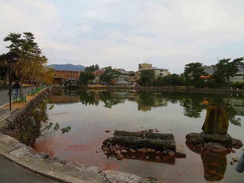 奈良市街を散策20200112_e0237645_15572398.jpg