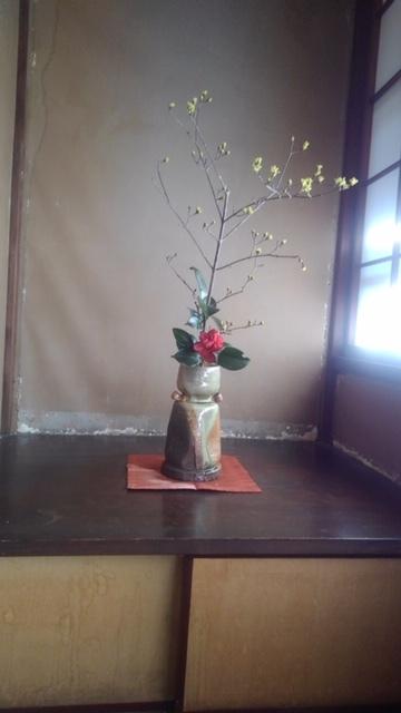 邸内に生けられた花 1月_d0344754_18593796.jpg
