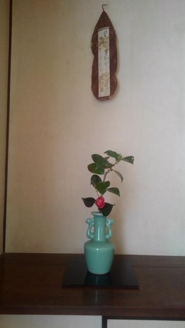 邸内に生けられた花 1月_d0344754_18594714.jpg