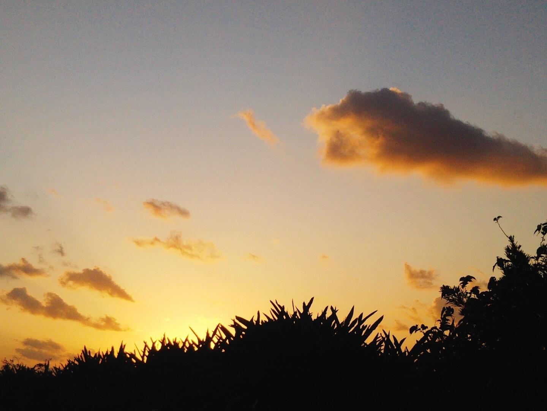 朝から。_e0251855_12094323.jpg