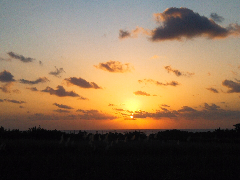 朝から。_e0251855_12094396.jpg
