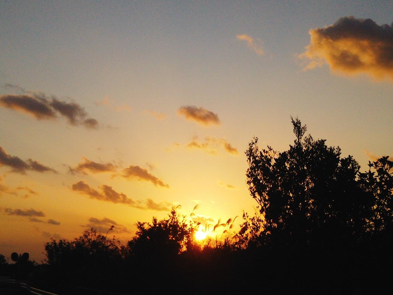 朝から。_e0251855_12094401.jpg