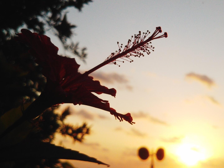 朝から。_e0251855_12094421.jpg