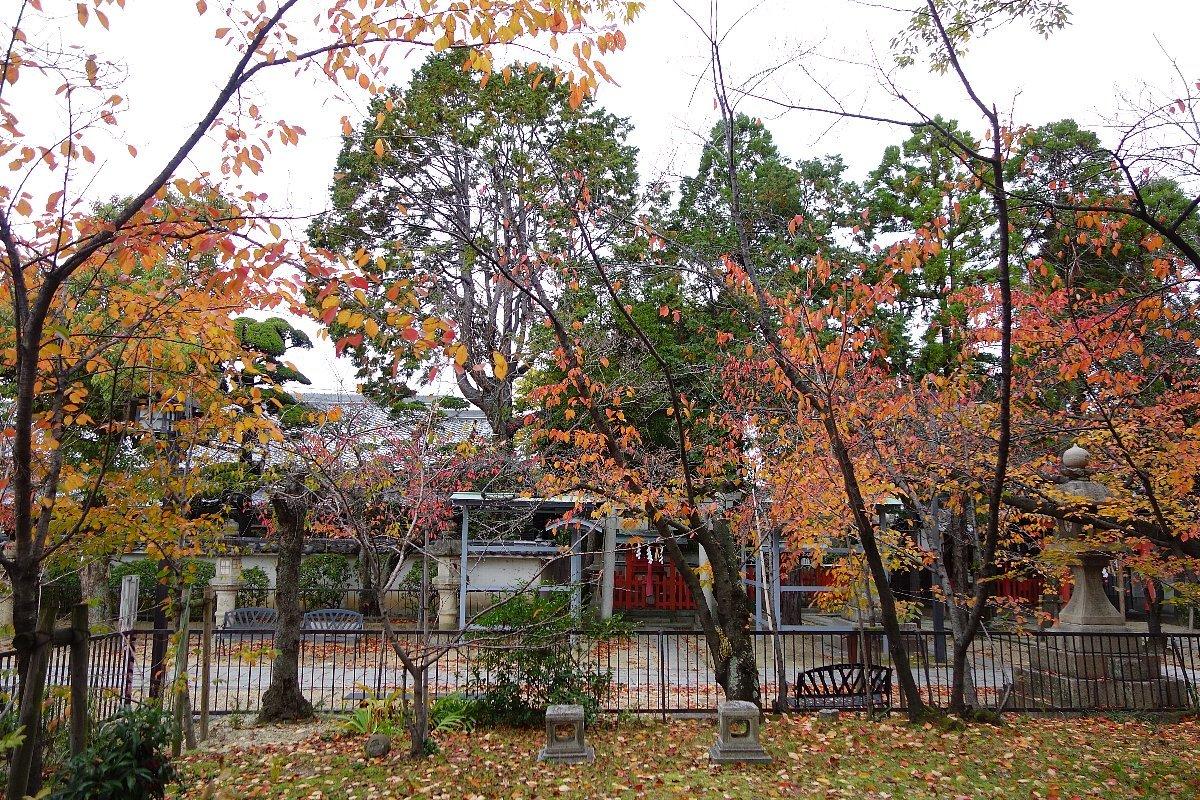 高槻市の三輪神社(その1)_c0112559_08332741.jpg