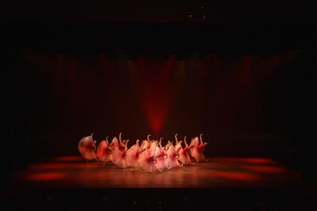 バレエの贈り物・冬 舞台写真_d0132565_18583336.jpg