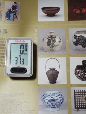 ぐるっとパスNo.15 庭園美「アジアのイメージ」展まで見たこと_f0211178_16414177.jpg