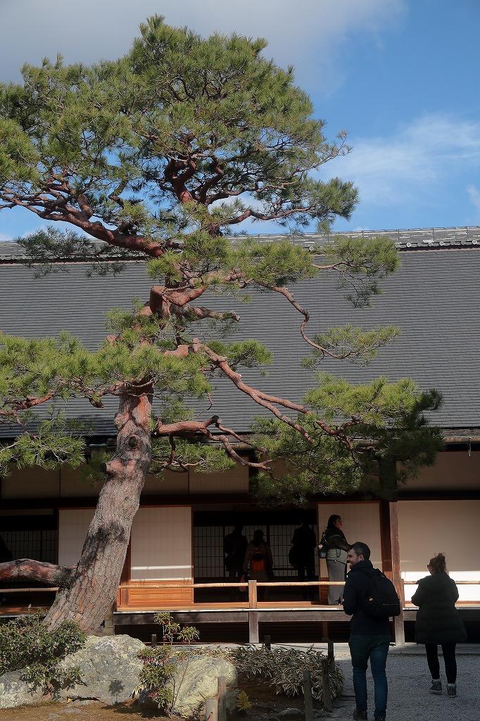 嵐山.嵯峨野3_a0170082_13382560.jpg