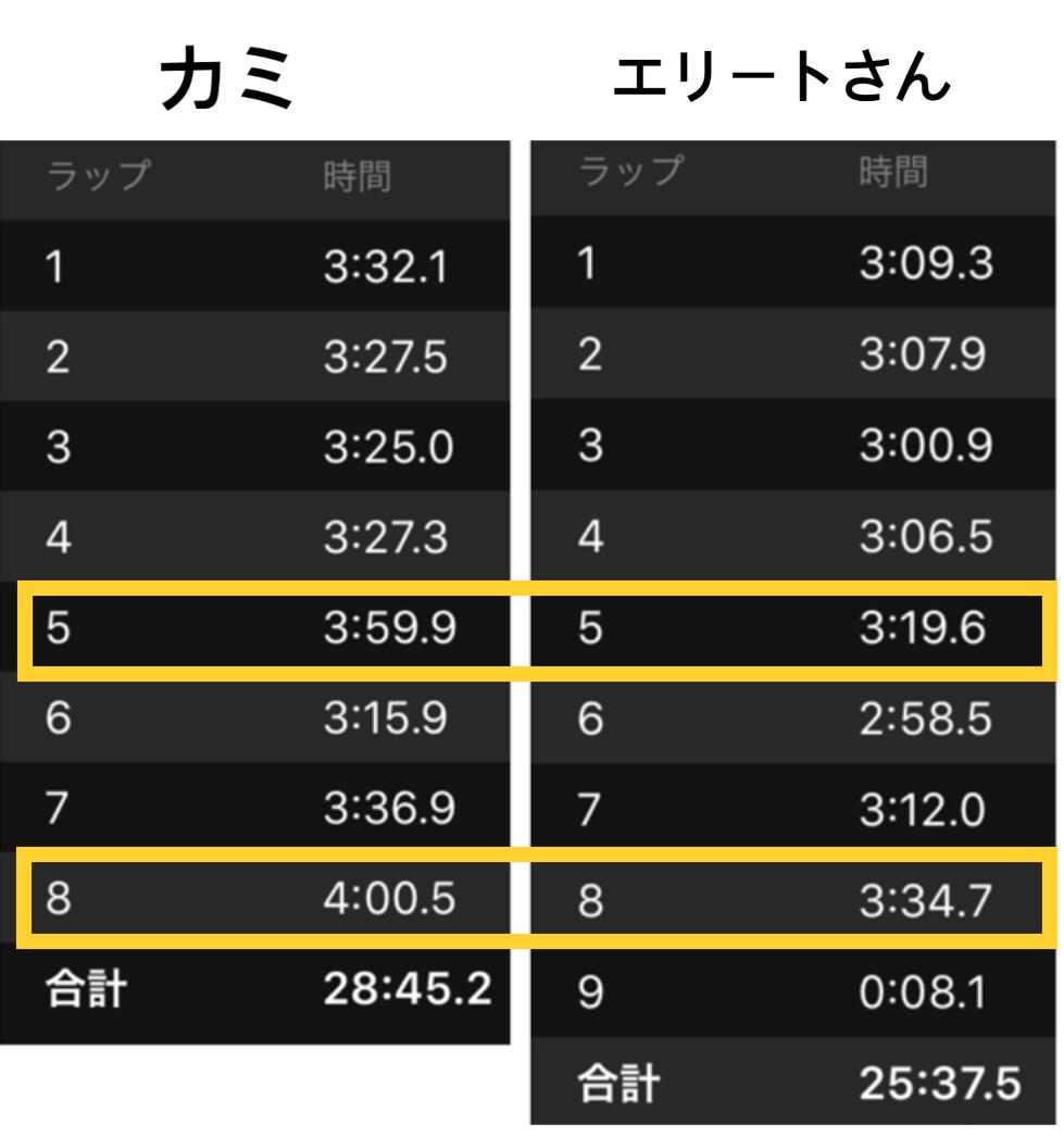 超一流市民ランナーと比較_f0310282_17545877.jpeg