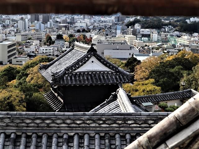 NHK大河ドラマ「麒麟がくる」がスタート、感動です、このドラマ大ヒット間違いなし・・・内容も良い映像が美し過ぎる_d0181492_23200769.jpg