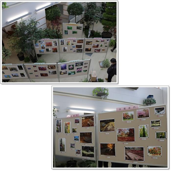 豊平公園・緑のセンター(20・1・13)_f0146493_21501531.jpg