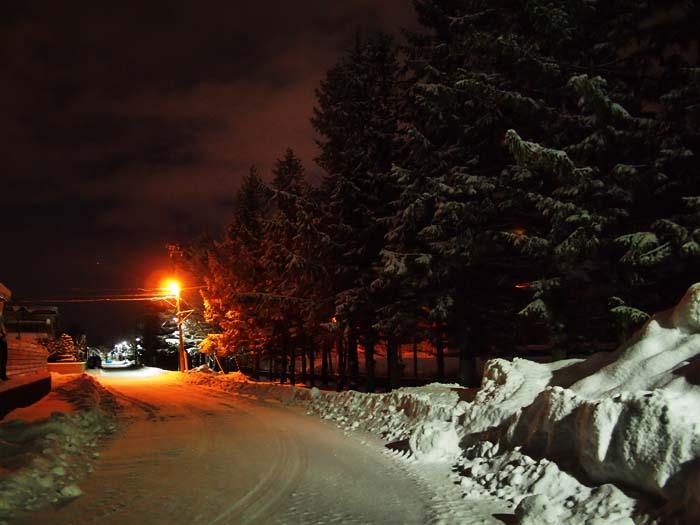 1月14日 今日の写真_b0103798_21475263.jpg