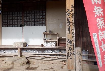 讃岐富士 毎日登山_e0077899_1133124.jpg