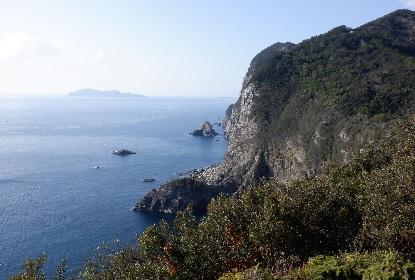 千羽ガ岳 海崖_e0077899_16485059.jpg