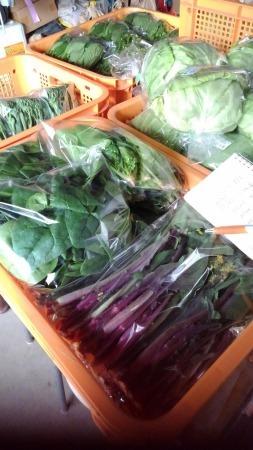 産直野菜の準備が終わりました。_d0026905_15270888.jpg