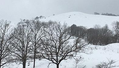田中英在歌集『雪中遍路』 百留ななみ_f0371014_09461944.jpg