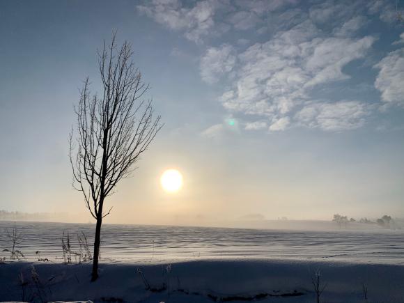 今朝は凍れました〜(^^)_f0096216_15442036.jpg