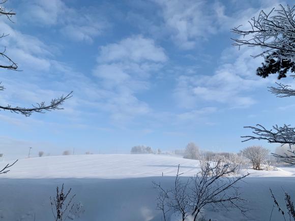 今朝は凍れました〜(^^)_f0096216_15442585.jpg