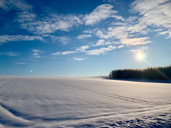 今朝は凍れました〜(^^)_f0096216_15450398.jpg