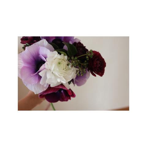* 2月の flower room*_a0161718_11015315.jpeg