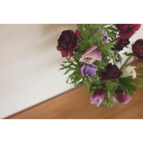 * 2月の flower room*_a0161718_11033190.jpeg