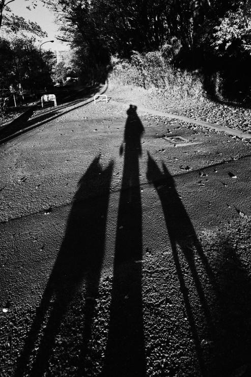 夕方の散歩(4cut)_e0342136_18510759.jpg