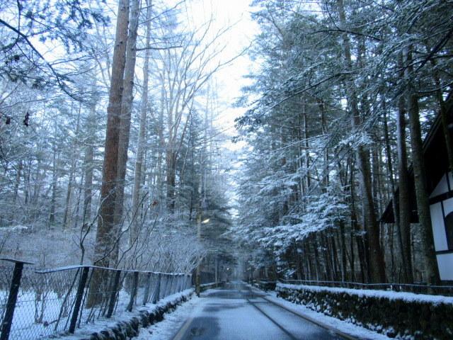 雪景色の旧軽井沢 * ベーカリー&レストラン 沢村~おかしやあした_f0236260_23411858.jpg