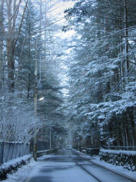 雪景色の旧軽井沢 * ベーカリー&レストラン 沢村~おかしやあした_f0236260_23413166.jpg
