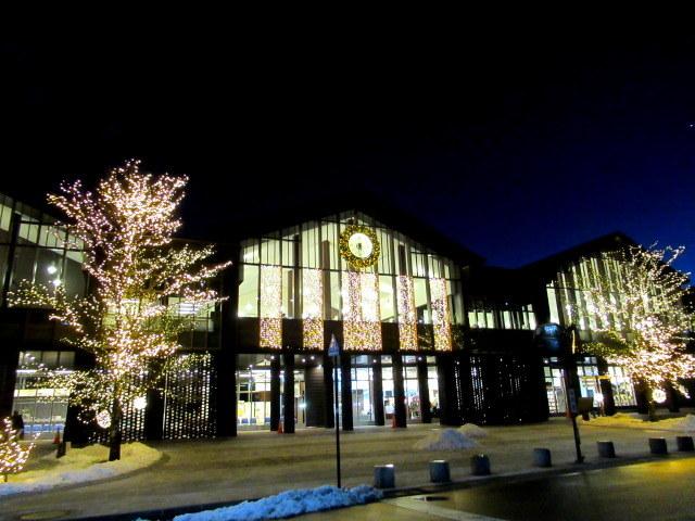 軽井沢・冬ものがたり * 中軽井沢駅のイルミネーション★_f0236260_23523875.jpg