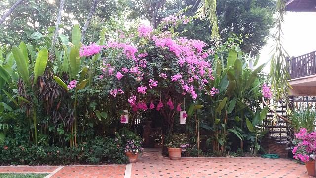 タイのバンコクへ行く 1_a0278866_10343273.jpg