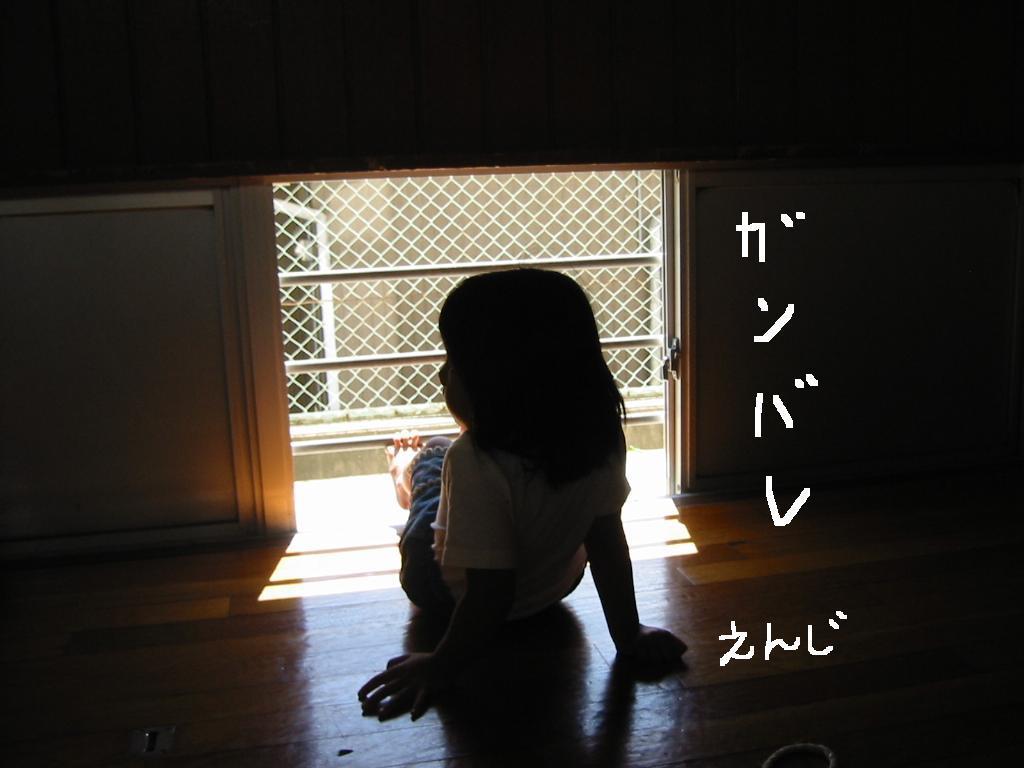 姫路城_d0165772_20411692.jpg