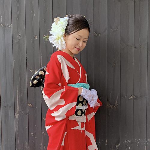 ③成人式のお客様 華やか赤地白鳩の着こなし_b0098077_18485528.jpg