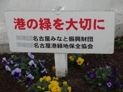 名古屋港水族館前花壇の植栽R2.1.15_d0338682_16235618.jpg
