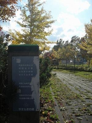 北屯田の公園と遊歩道を歩く(2)_f0078286_07311396.jpg