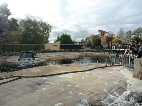 エディンバラ動物園(Edinburgh Zoo)_c0076387_06010296.jpg